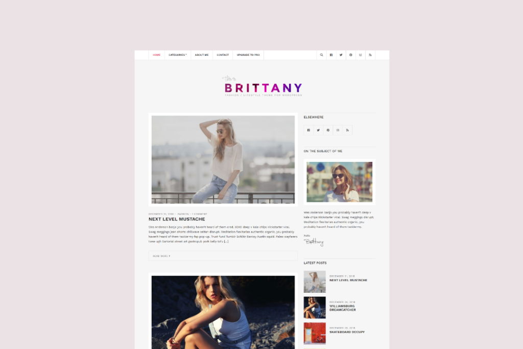 brittany-lifestyle-themeforest